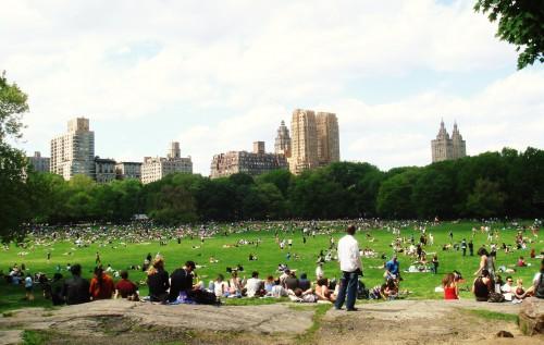 Pessoas descansando no Central Park