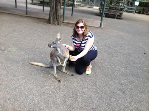 Meu contato com canguru e o medo do lango lango