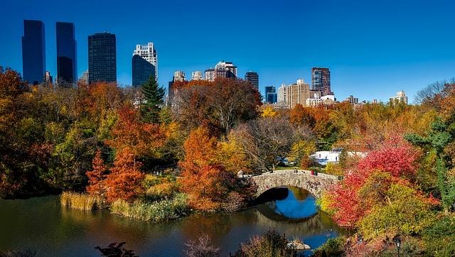 O que fazer em Manhattan: Central Park