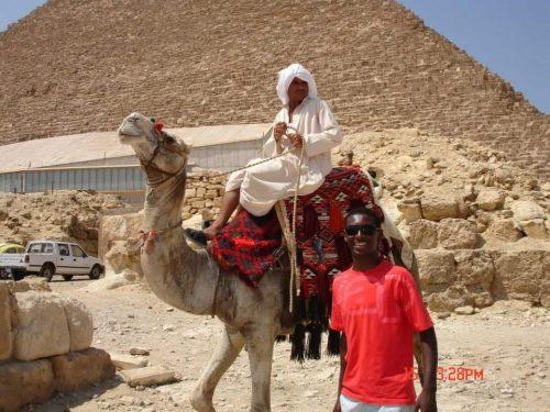 Camelo, pirâmide e turista