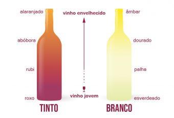 Como harmonizar vinhos: guia rápido com dicas úteis
