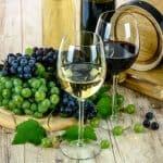 Dicas rápidas sobre harmonização de vinhos