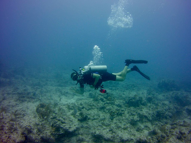Mergulho em Florida Keys