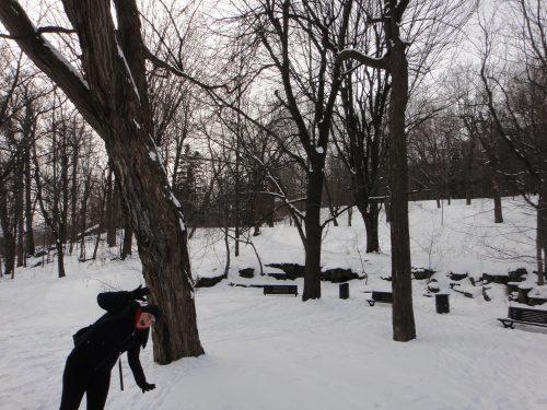 Viajar no frio