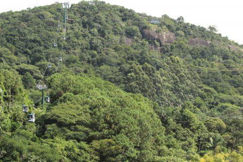 Teleférico e a Mata Atlântica de Balneário Camboriú