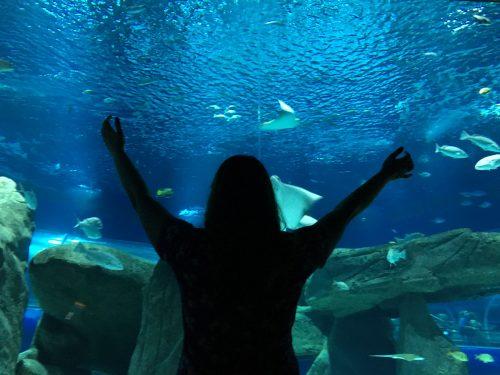 Turista em frente ao aquário no AquaRio