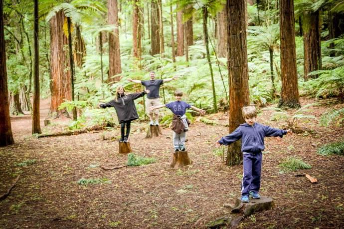 Família passeando pelas florestas da Nova Zelândia