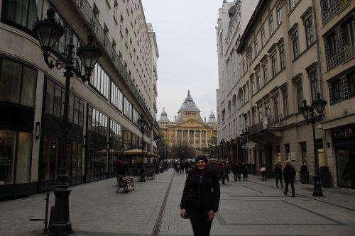 Rua de comércio no centro de Budapeste