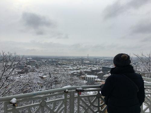Vista para Budapeste do Monumento da Liberdade