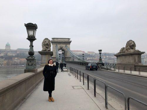 Arquitetura da Ponte Chain em Budapeste