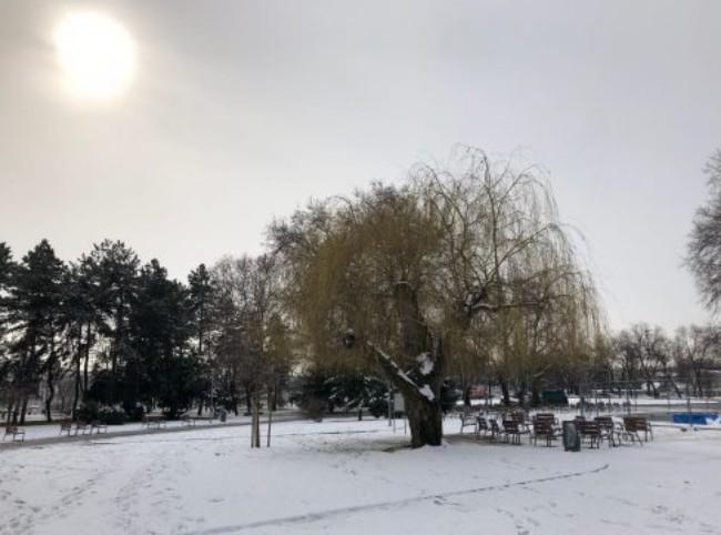 Ilha Margit no inverno