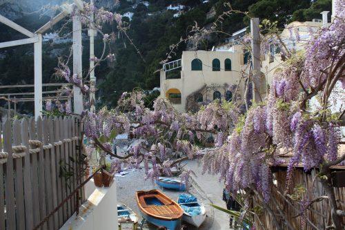 Flores e barcos na Marina Piccola