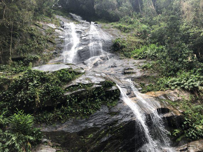 Água escorrendo pelas pedras em meio a floresta