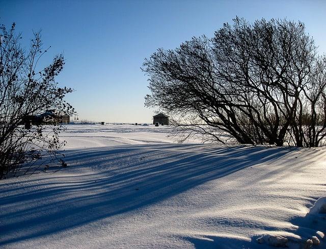 Campo coberto com neve em um dia ensolarado