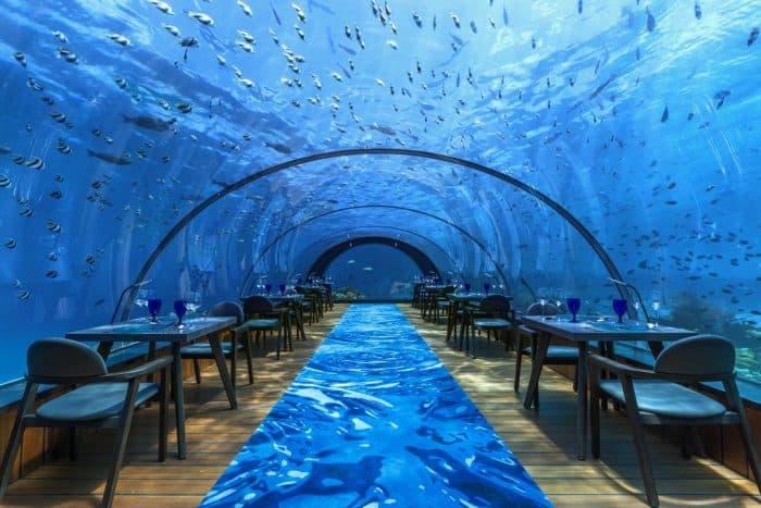 Restaurante submerso, todo em vidro com peixes passando