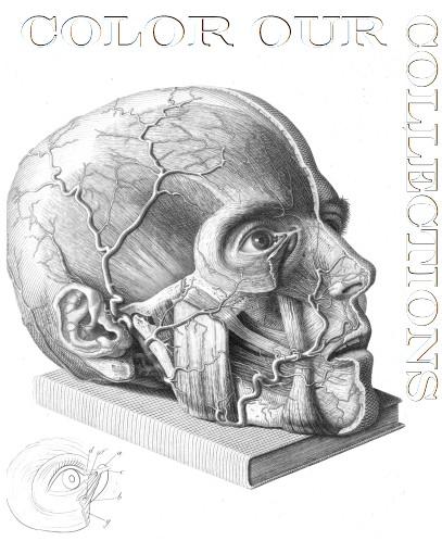desenho para colorir de uma cabeça
