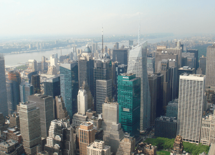 Vista de Nva York