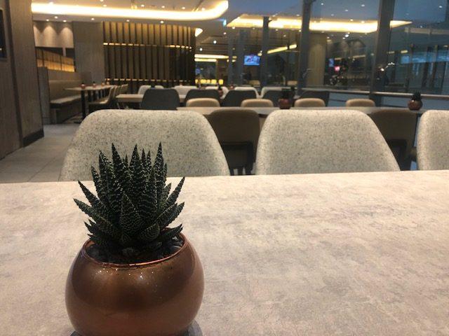 aeroporto de dubai lounge vip plaza premium