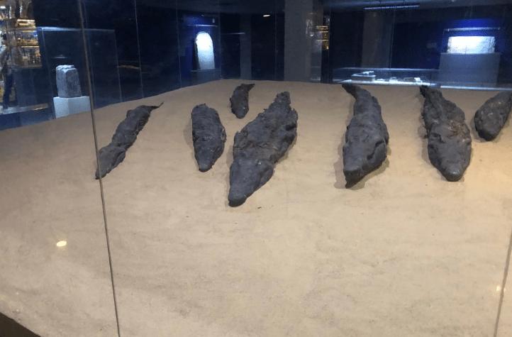 Mumificação do crocodilo