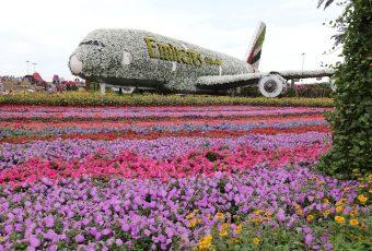 Miracle Garden Dubai: como é o jardim mais bonito do mundo