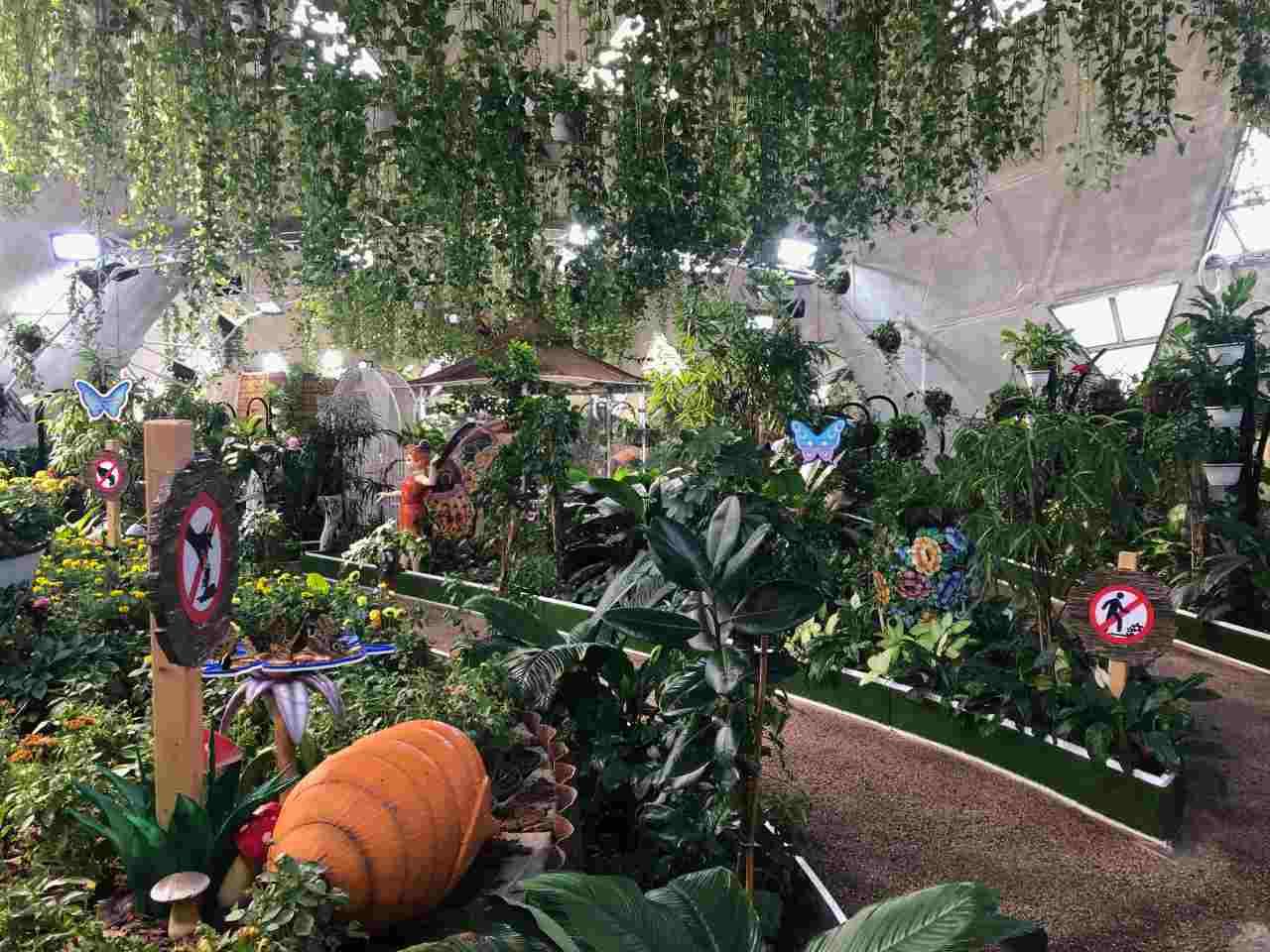 Paisagem do Butterfly Garden, em Dubai