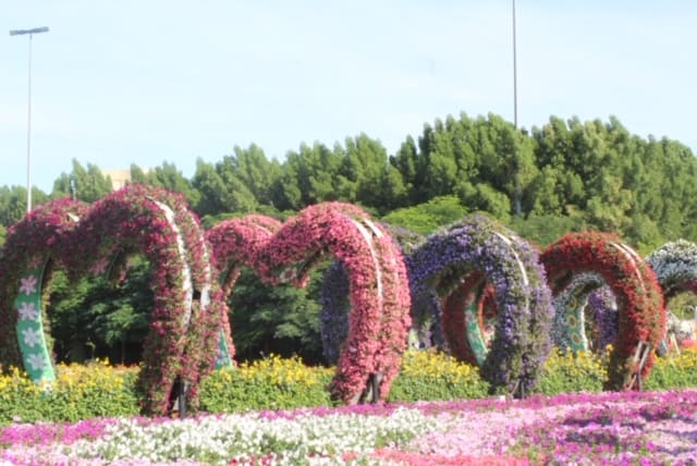 Corredor de Corações no Miracle Garden