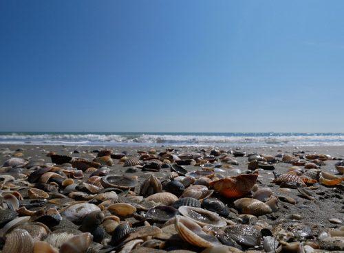 Como é a praia de Lido