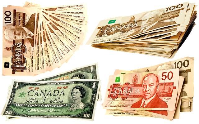 Como é o dólar canadense