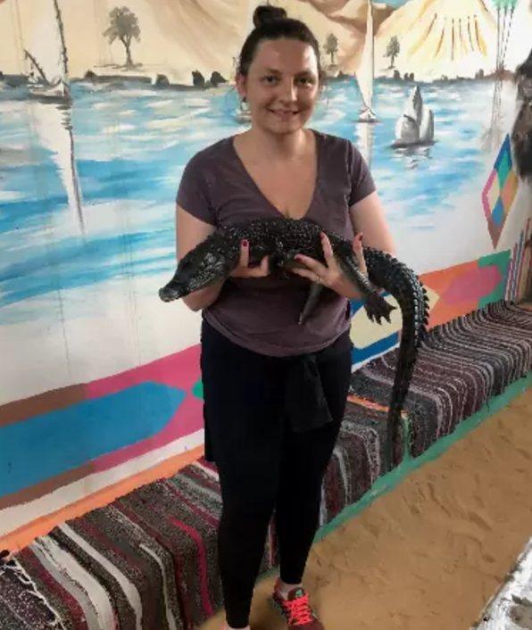 crocodilo no Egito